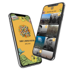 Lost Cove Festival | App